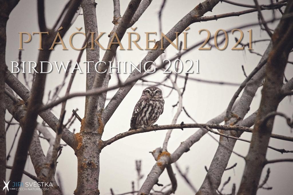 Birdwatching aneb ptáčkaření 2021